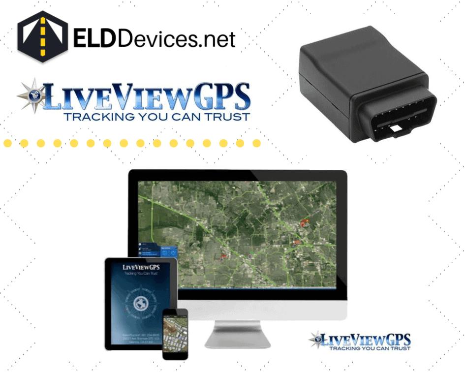 liveviewgps
